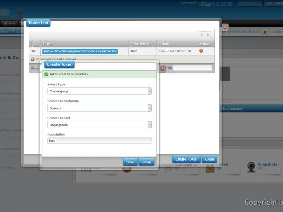 Teamspeak Interface Virtual Server Token Management