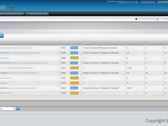 Teamspeak Interface Virtual Server Overview