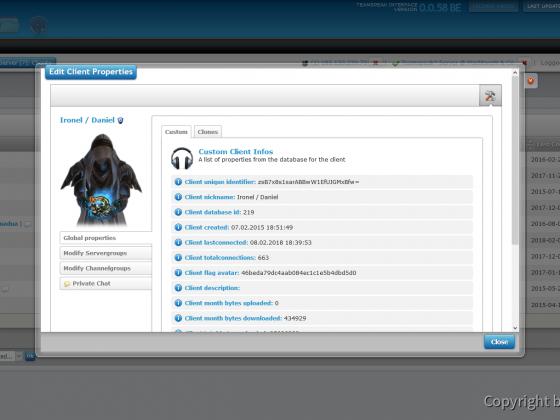 Teamspeak Interface Virtual Server Client Options